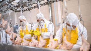 рабочие во время карантина на мясокомбинате